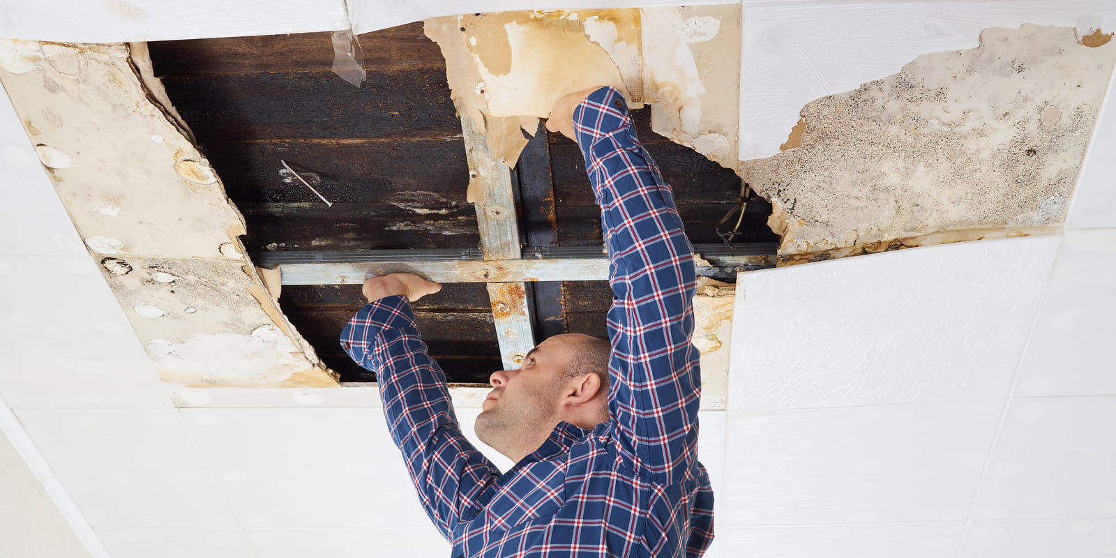 The Real Costs of Water Damage to Your Home